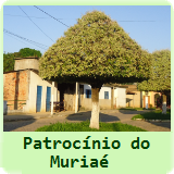 Patrocínio do Muriaé